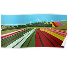 Tulip Farm, Table Cape Poster