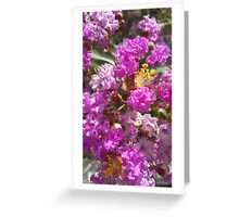 Complementary Flowers Greeting Card