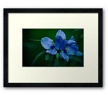 Blue Aura Framed Print