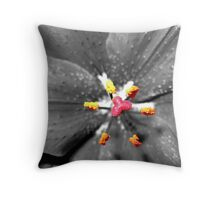 Overhead View of Fairy Table and Chairs Throw Pillow