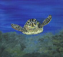 Sea Turtle by Melanie Coutts