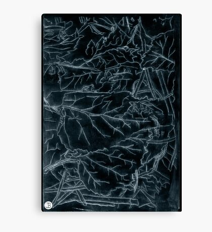 Forest floor acrylic plate etching, white ink on black paper Canvas Print