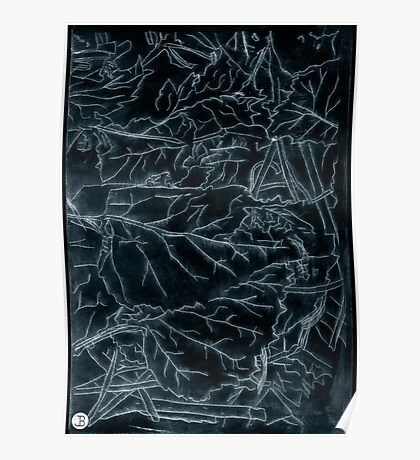 Forest floor acrylic plate etching, white ink on black paper Poster