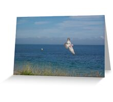 Bird on the wing Greeting Card