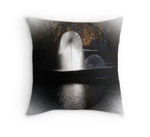 Avon River N.Z. Throw Pillow