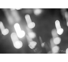 Rain light Photographic Print
