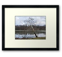 Simply Winter Framed Print
