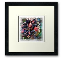 The Atlas Of Dreams - Color Plate 57 Framed Print