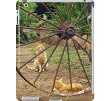 Guarding the Gate to where the Cats and Kittens live iPad Case/Skin