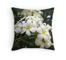 Plumeria Flower Throw Pillow