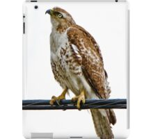 The eye of the hunter iPad Case/Skin