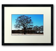 Standing out in the field Framed Print
