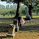 Patriot's Holiday by Bob Fox