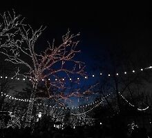 SDC lights BW and night by PicsbyJody