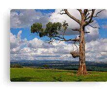 Great farming country, Drouin, Gippsland, Victoria. Canvas Print