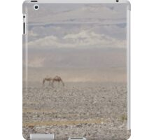 Camels in Jordan iPad Case/Skin