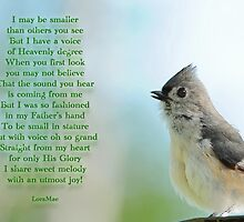 I may be smaller by Bonnie T.  Barry
