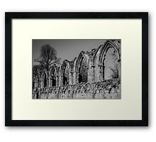Ruins of St. Mary's Abbey #3 Framed Print