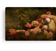 The Dreamer Canvas Print