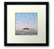 The Dingo Fence Framed Print