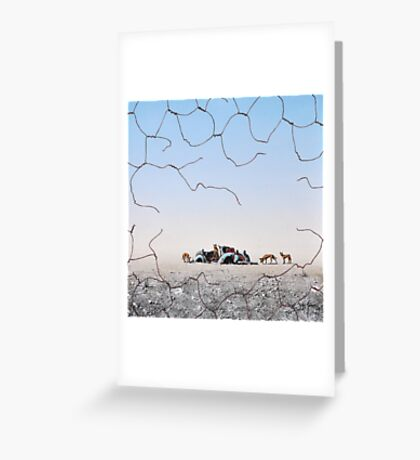 The Dingo Fence Greeting Card