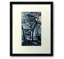 Ethereal Trees Framed Print