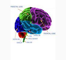 Brain Function Long Sleeve T-Shirt