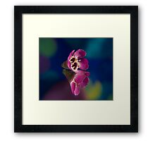 Float.  Framed Print