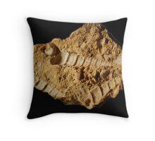 Fossil Imprint Throw Pillow