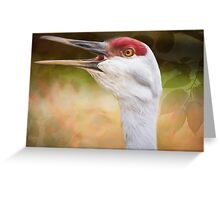Bird Art - Look Who's Talking Greeting Card