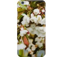 Flower Art - Apple Blossoms iPhone Case/Skin