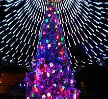 Dome of lights on Christmas tree at the Casino. by EdsMum