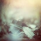 Leaves of Time by Trish Mistric