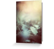 Leaves of Time Greeting Card