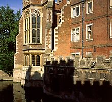The Old Library, St. John's College, Cambridge by Priscilla Turner