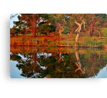 """Morning Reflections"" Metal Print"