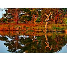 """Morning Reflections"" Photographic Print"
