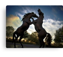 Rymill Coonawarra Winery Canvas Print