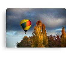 Autumn Flight Canvas Print