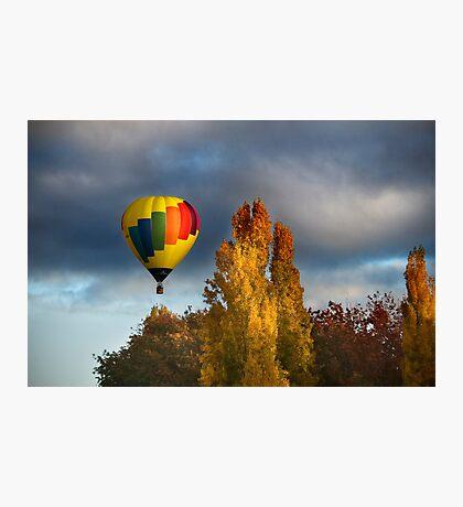 Autumn Flight Photographic Print