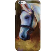 Horse of Colour iPhone Case/Skin