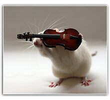 Its not easy being a violin player:) by Ellen van Deelen