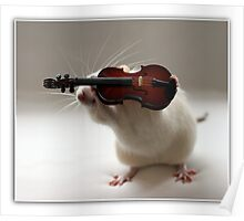 Its not easy being a violin player:) Poster