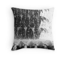 Pineapple Fountain - Charleston, SC Throw Pillow