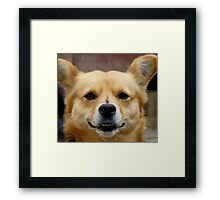 I M WATCHING YOU :) Framed Print