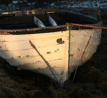 Boat by Fiona MacNab