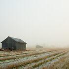 Oktober - Västra Spöland by Bjarte Edvardsen