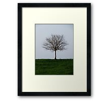 Edge of the Earth Framed Print