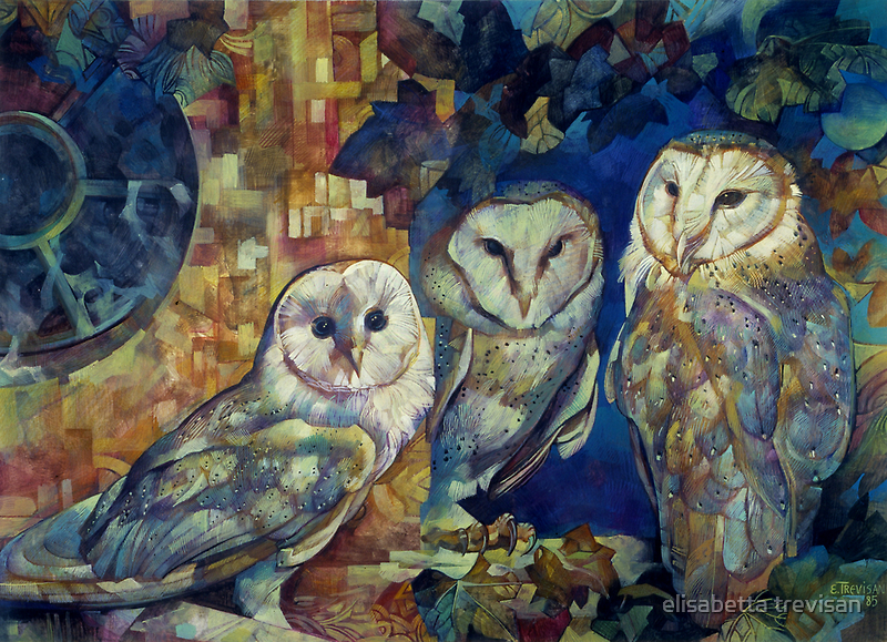 barn owls by elisabetta trevisan