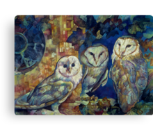 barn owls Canvas Print